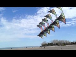 Light Hearted Kites